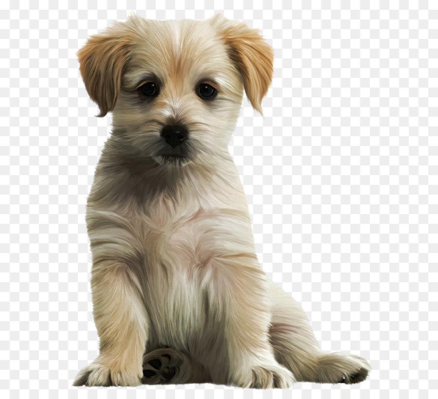 Labrador retriever clip art. Beagle clipart little puppy