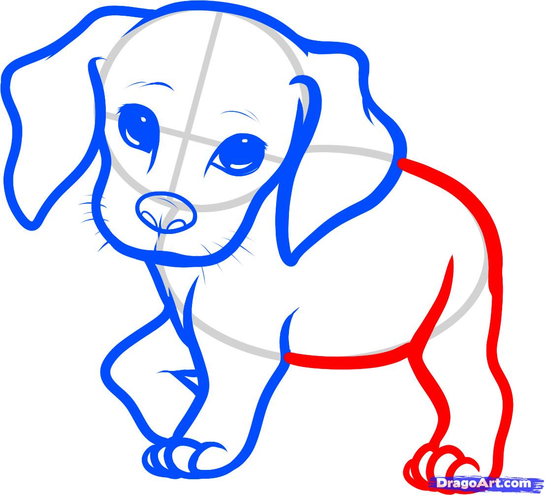 Beagle clipart little puppy. Collection of free download