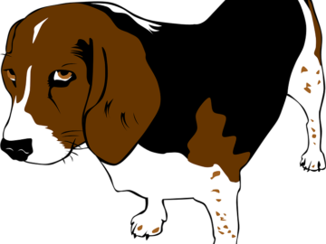 funny animal memes. Beagle clipart lost pet