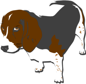 Beagle clipart medium. Grey png svg clip