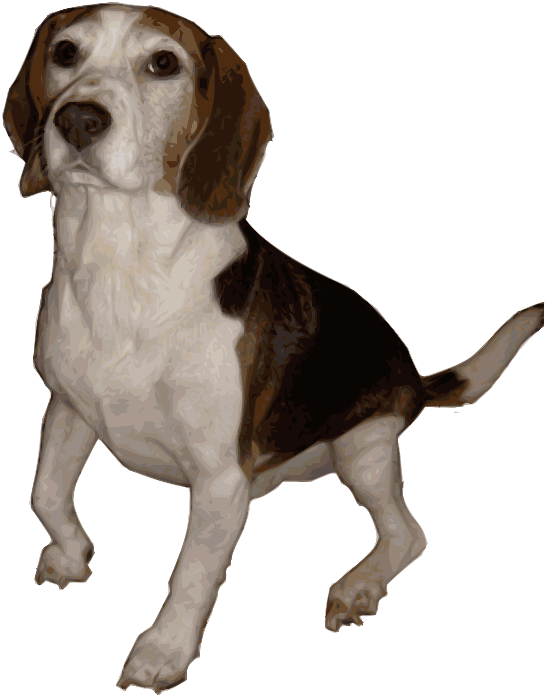 Pet clipart beagle. Medium version big image