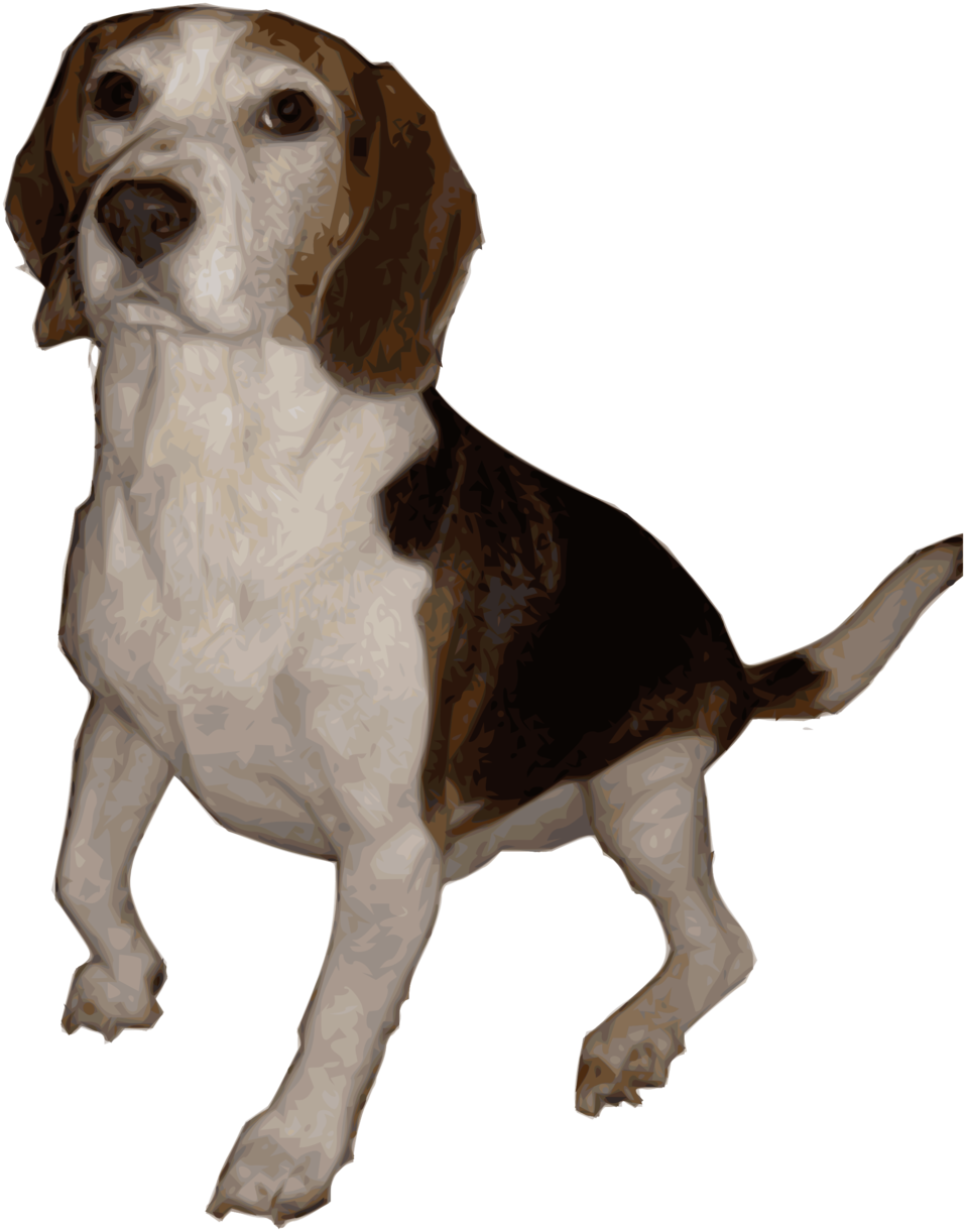 Clip art image medium. Beagle clipart public domain