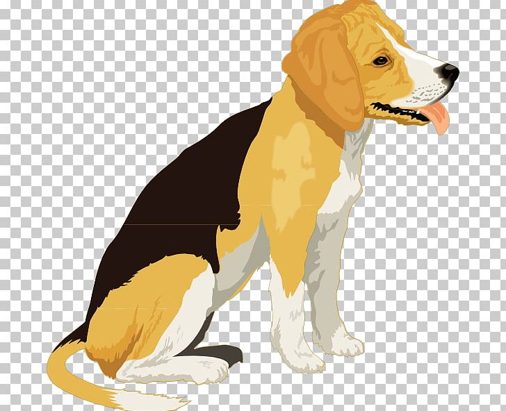 Beagle clipart pup. Puppy free content png
