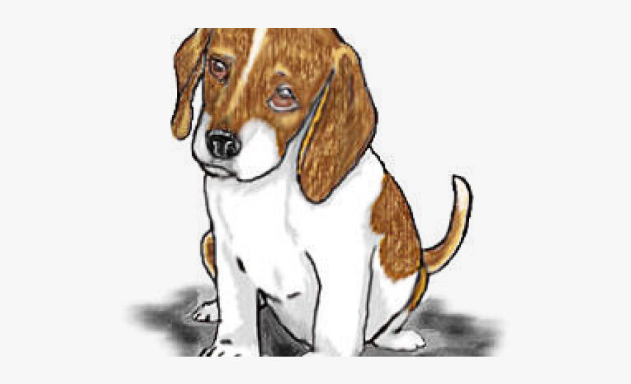 Harrier free cliparts on. Beagle clipart pup