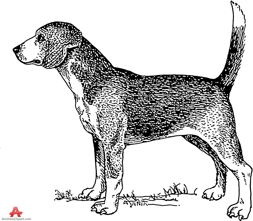 Dog drawing free design. Beagle clipart puppie
