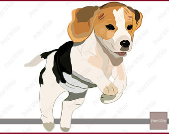 Beagle clipart puppie. Clip art etsy digital