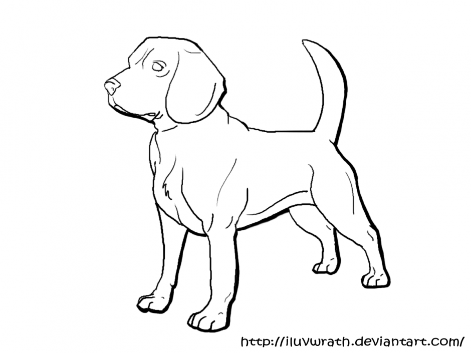 Beagle clipart realistic. Dog drawing at getdrawings