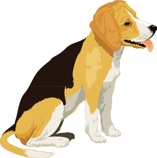 Beagle clipart realistic. Free vector in open