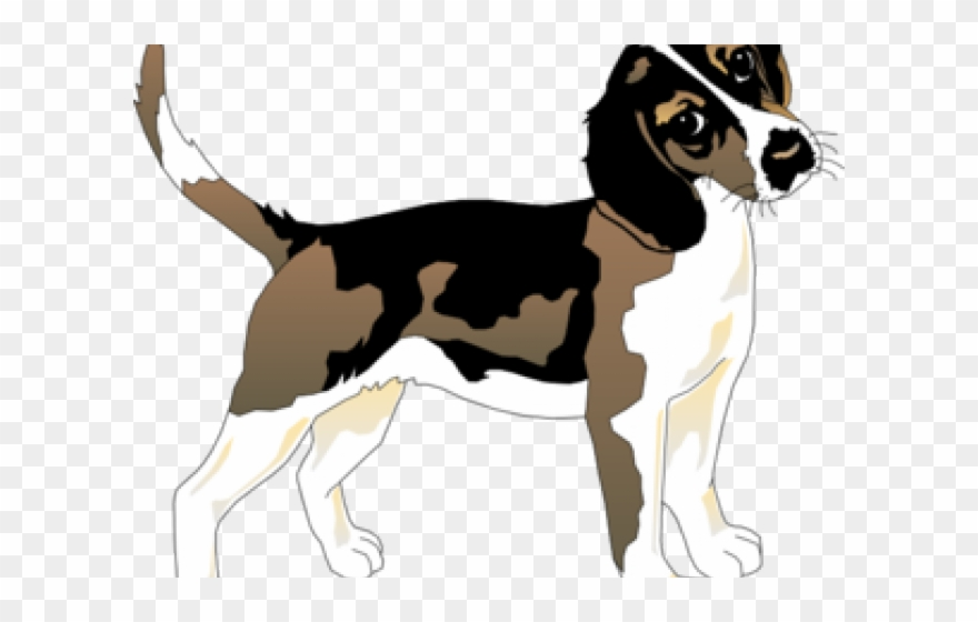 Sombras de animais png. Beagle clipart sad dog