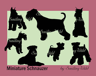 Beagle clipart schnauzer. Svg etsy mini miniature