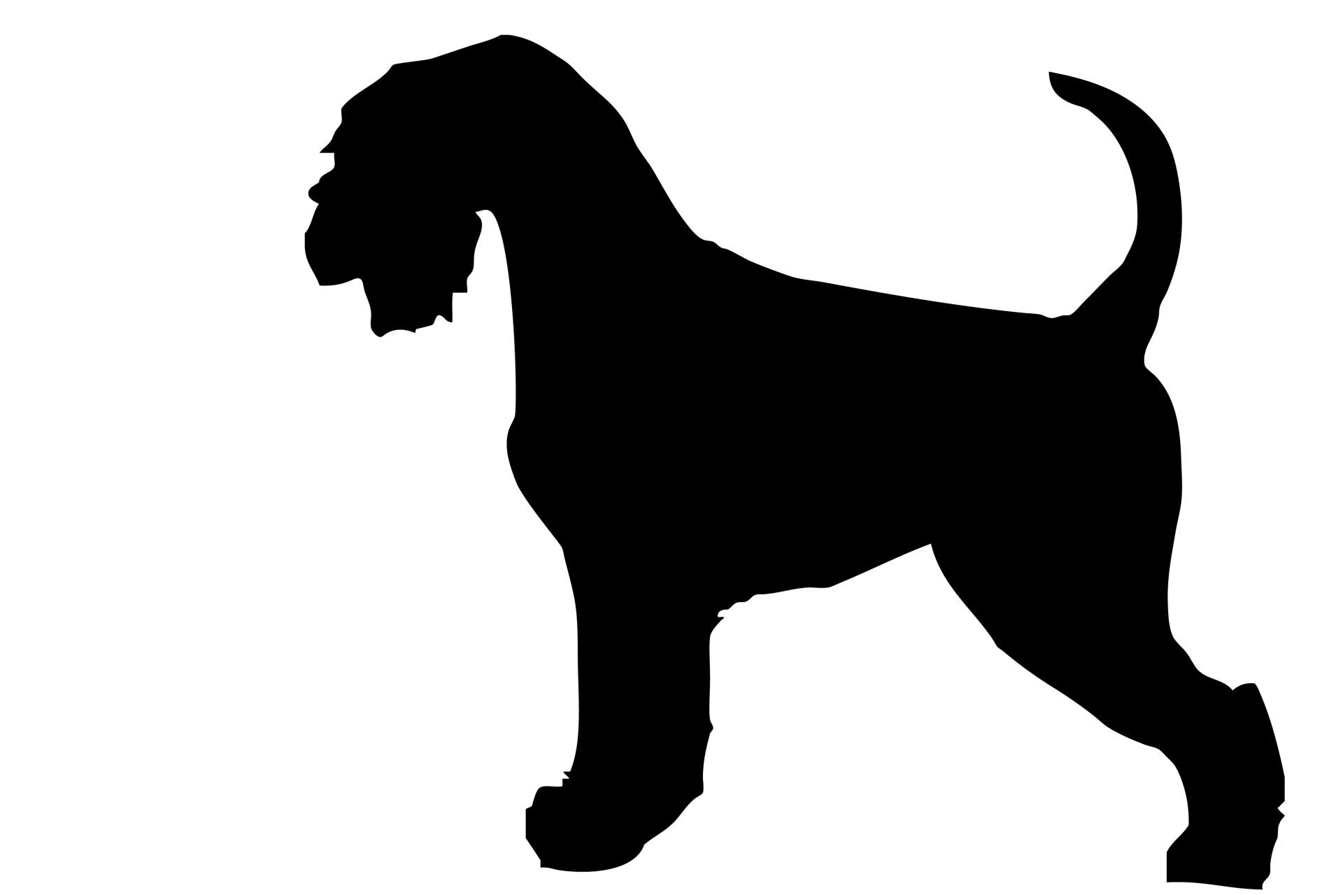 Beagle clipart schnauzer. Silhouette clip art at