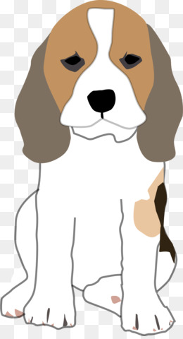 Beagle clipart transparent background. Png and psd free