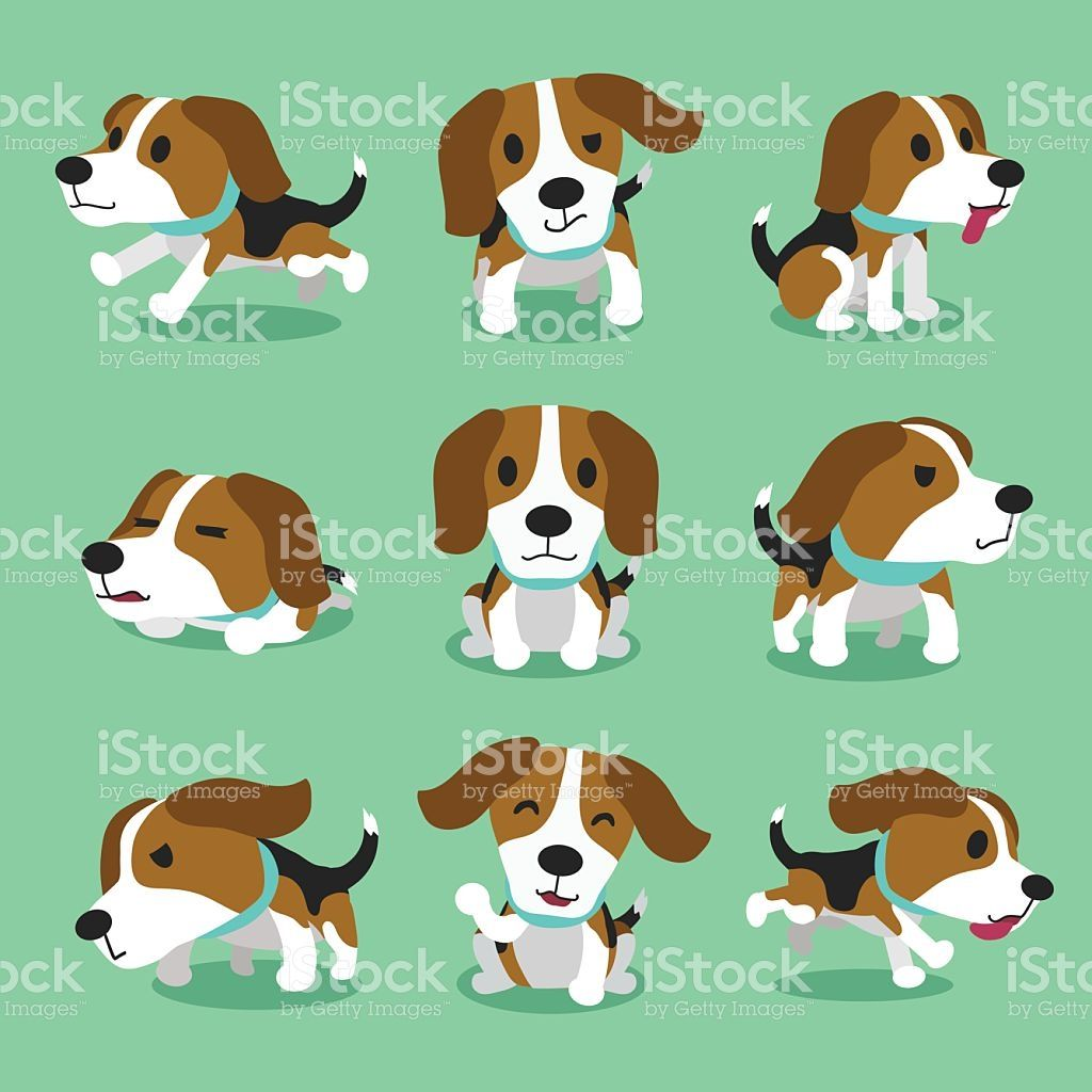 Cartoon character dog poses. Beagle clipart worried