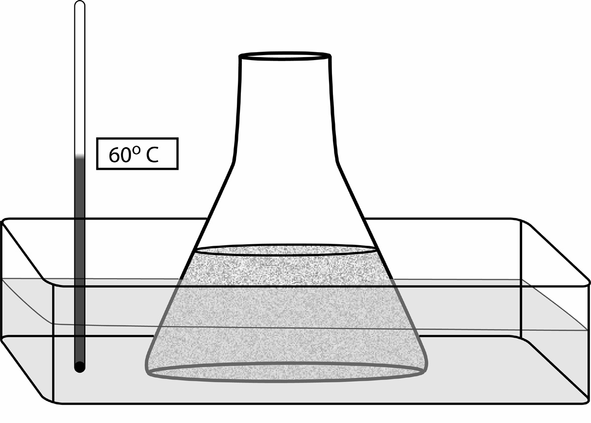 Beaker clipart water drawing. Sep gel electrophoresis from