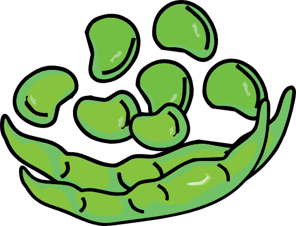 Bean panda free images. Beans clipart