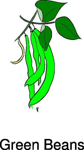 Bean clipart animated. Green beans clip art