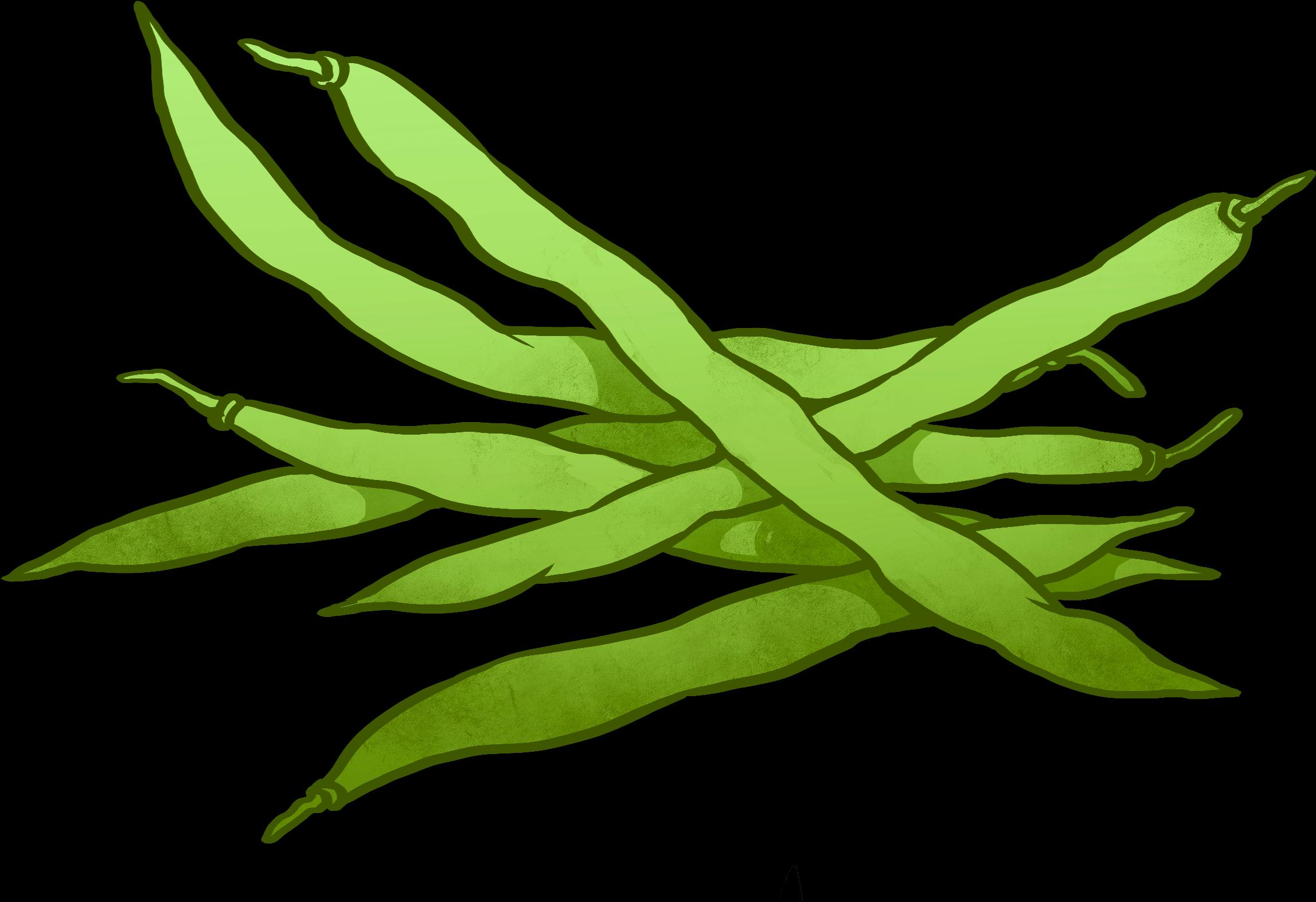 Bean clipart bataw. Hd peas drawing runner