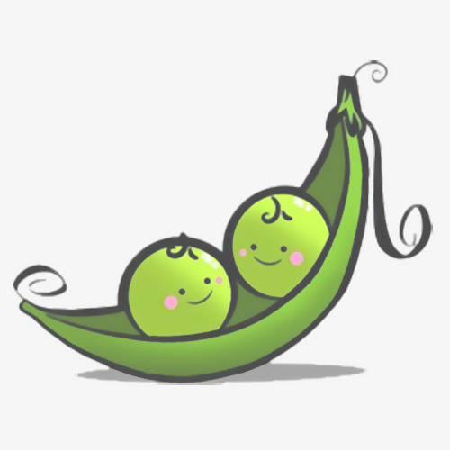 Cartoon mung soybean peas. Beans clipart bean pod