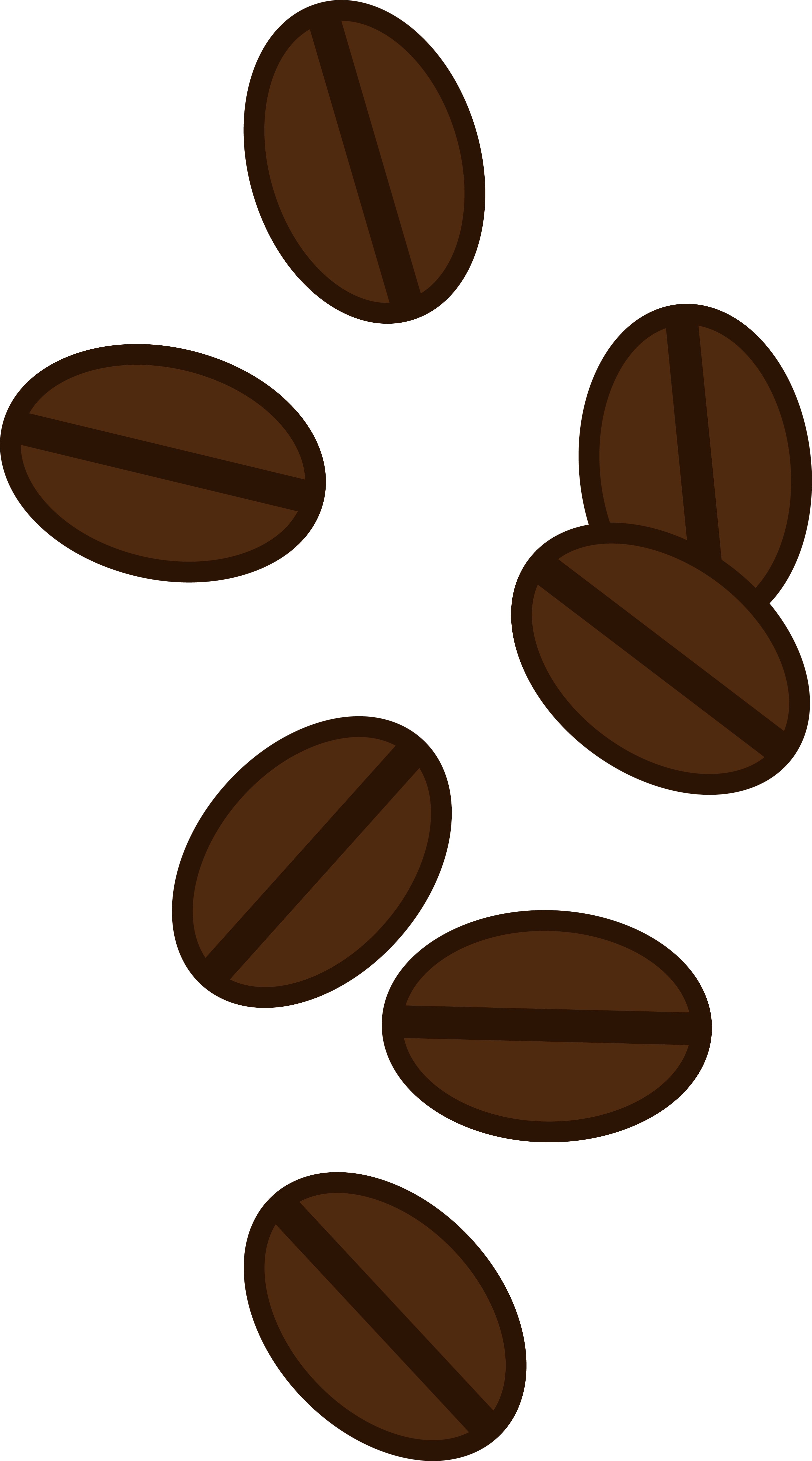 Coffee bean vector png. Owl clipart