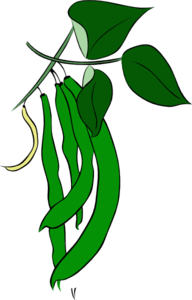 Beans clipart green bean. Clip art at clker