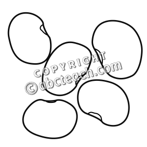 Lima . Bean clipart black and white