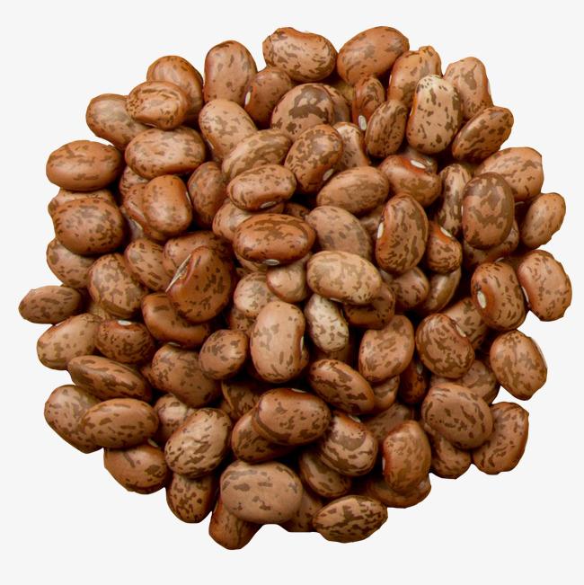 Grains and beans food. Bean clipart broad bean