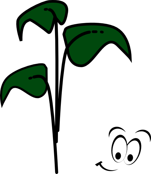 Sprout clip art at. Bean clipart character