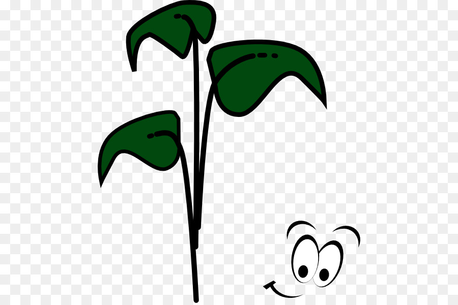 Sprouting bean brussels sprout. Beans clipart clip art