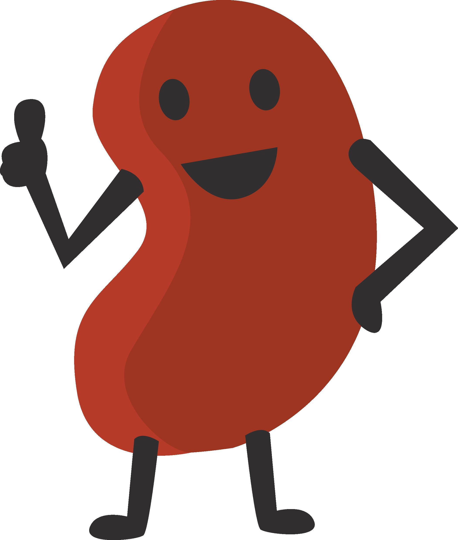 Kidney ideas for ara. Bean clipart comic