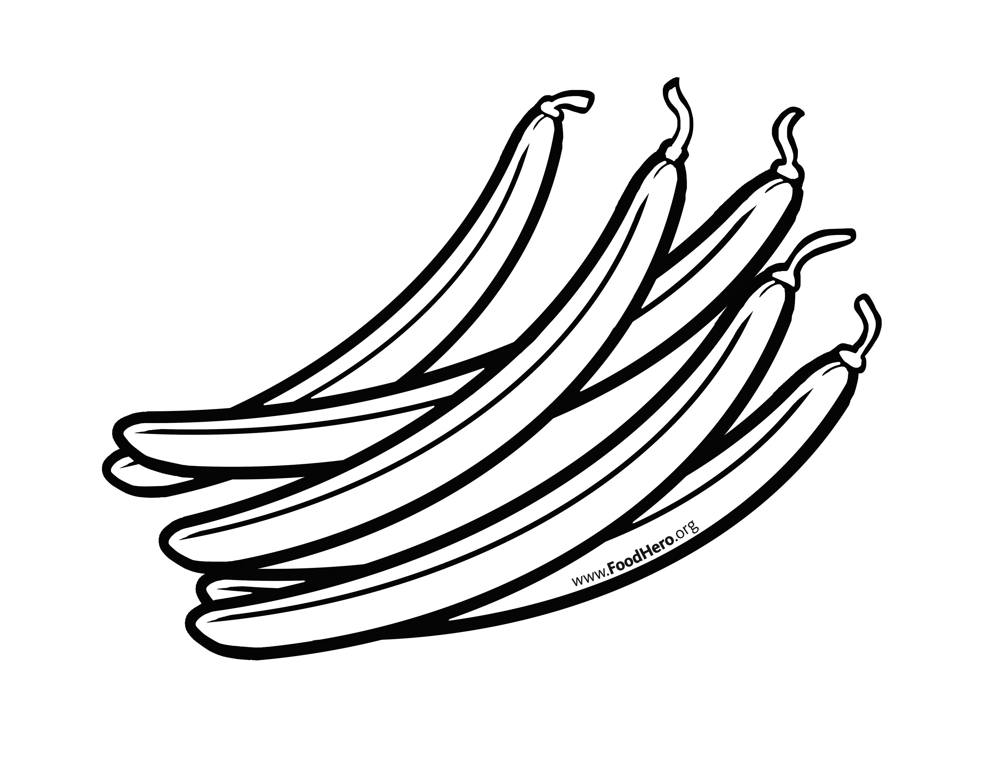 Beans clipart drawing. String free download best