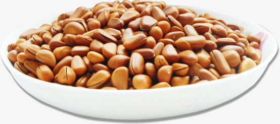 Bean clipart dried bean. Beans dry nut broad