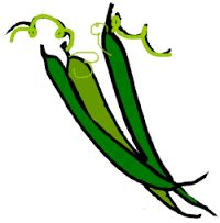 Bildergebnis f r green. Bean clipart french bean