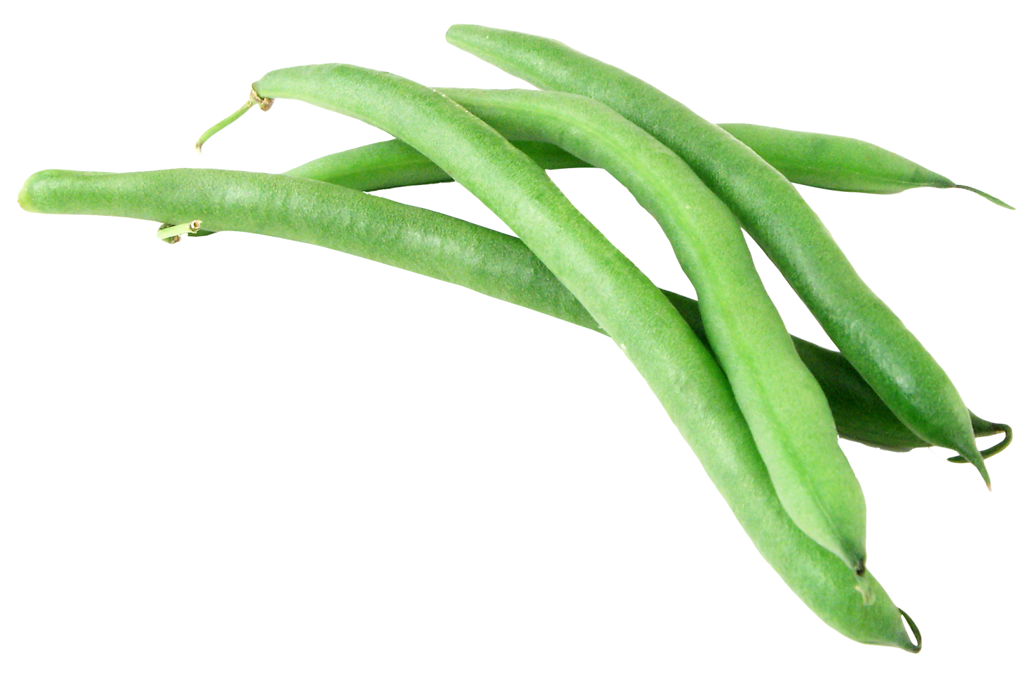 Green beans png image. Bean clipart french bean