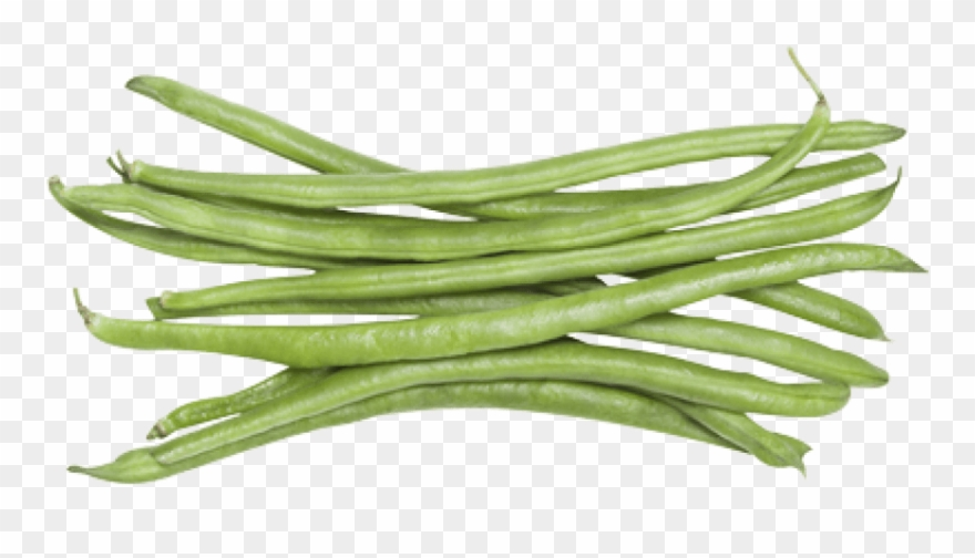 Free png download images. Beans clipart green bean