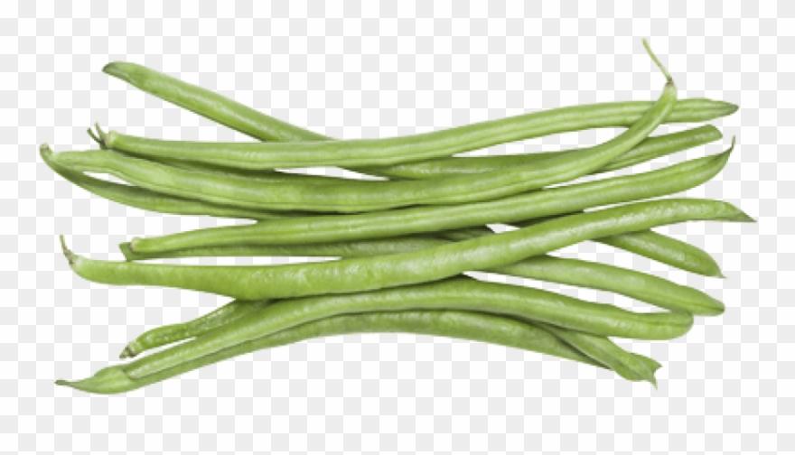 Free png download beans. Bean clipart green bean