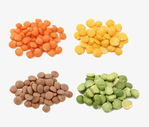 Grain composition green cereals. Beans clipart lentils