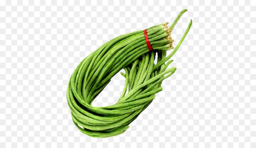 Green grass background vegetable. Bean clipart long bean