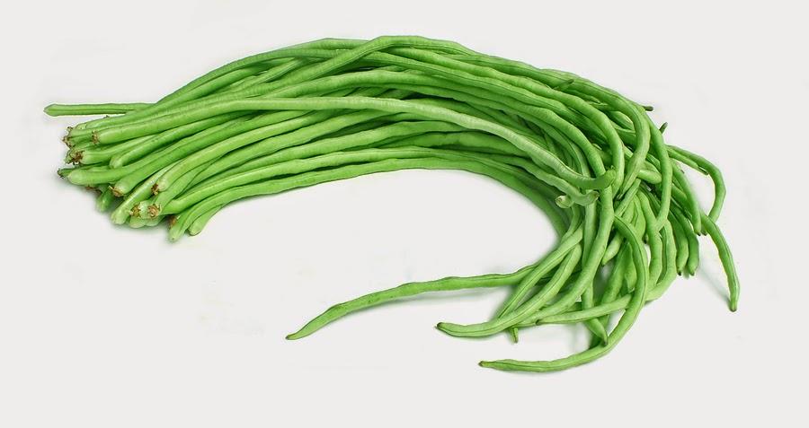 Black and white portal. Bean clipart long bean