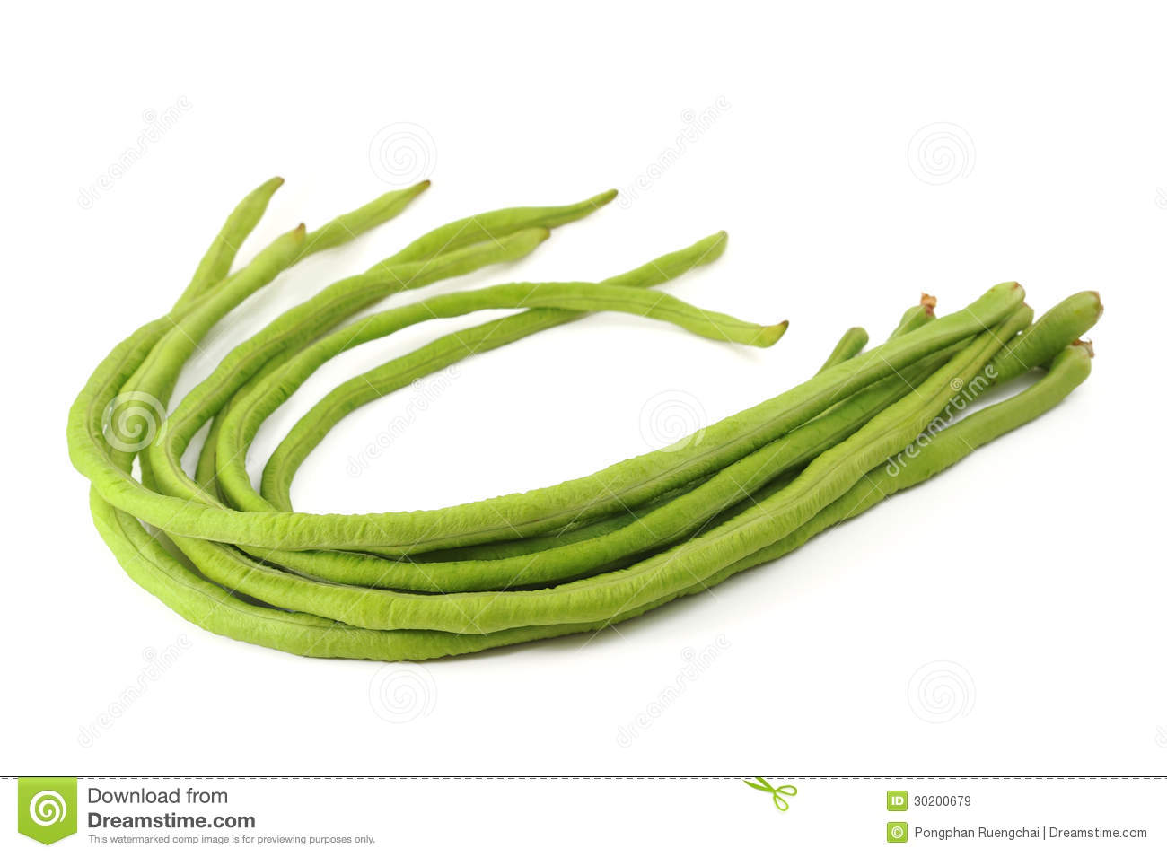 Pencil and in color. Beans clipart long bean