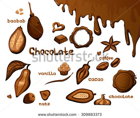 Nut brown objects free. Bean clipart nuts