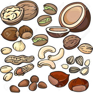 Free nuts images at. Nut clipart clip art