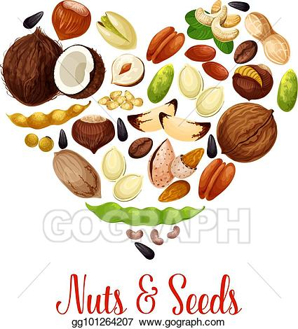 Peanuts clipart nut seed. Vector heart with nuts