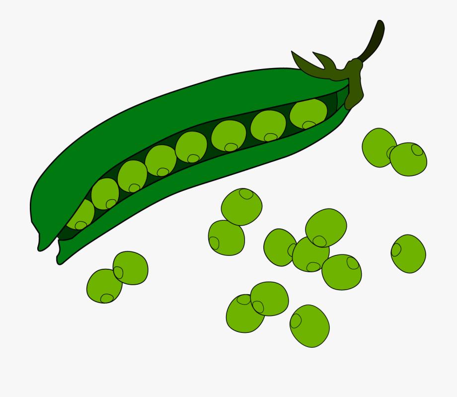 Fruit clip art green. Bean clipart pea