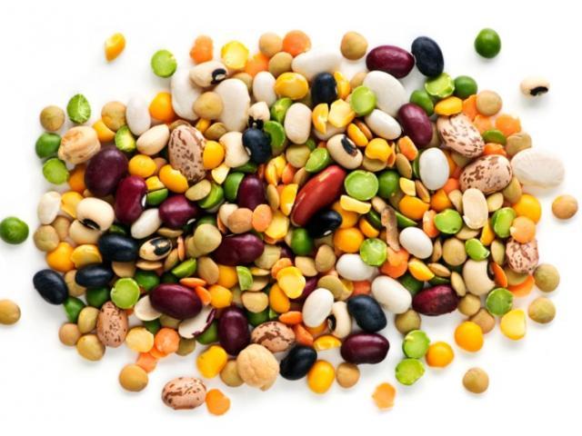 Health free on dumielauxepices. Bean clipart pulse