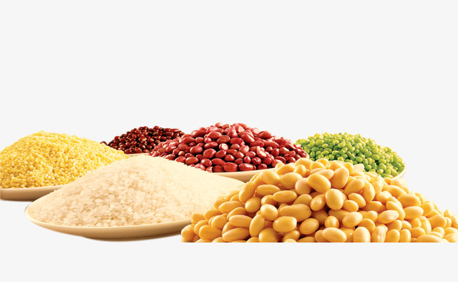 Bean clipart rice bean. Whole grains paddy beans