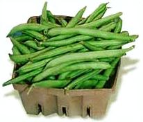 Free fresh beans page. Bean clipart runner bean