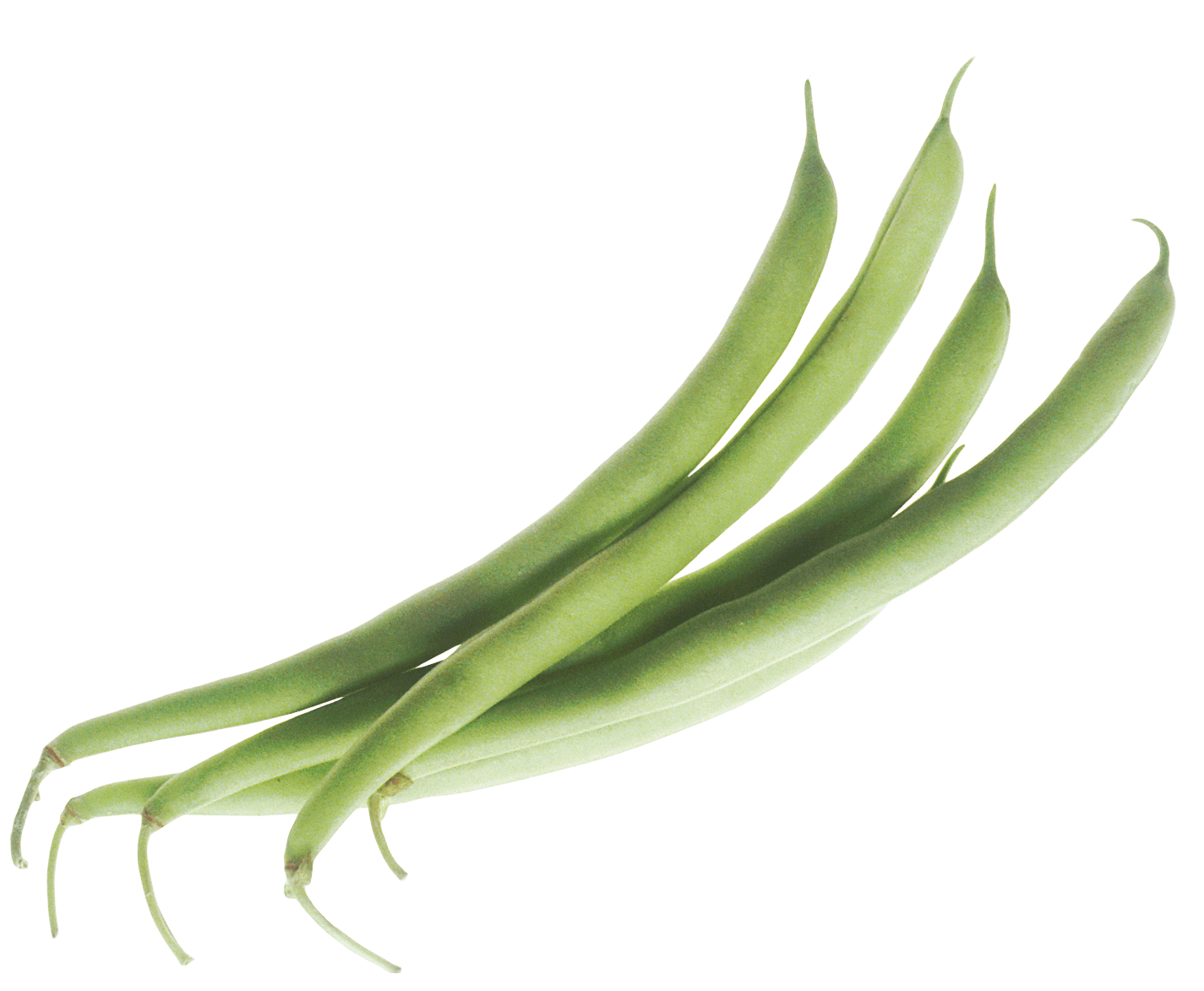 Bean clipart runner bean. Green beans transparent png