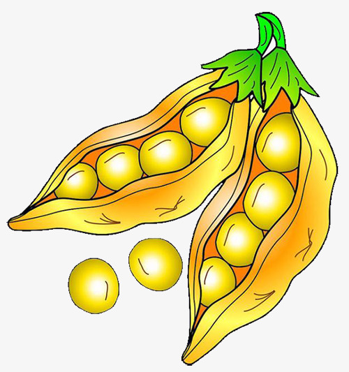 Bean clipart soybean. Peas soy pea cartoon