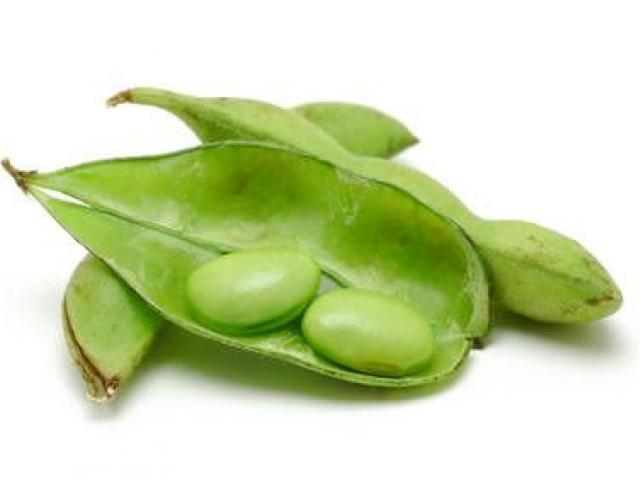 Counter picture free download. Bean clipart soybean