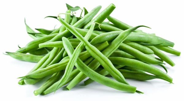 Bean clipart string bean. Beans free images at